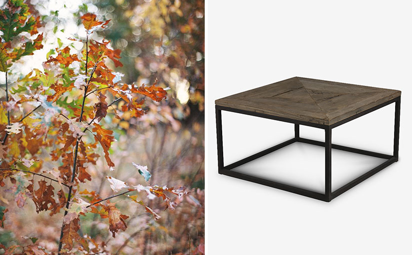 Embrace Nature - Wooden Top Coffee Table