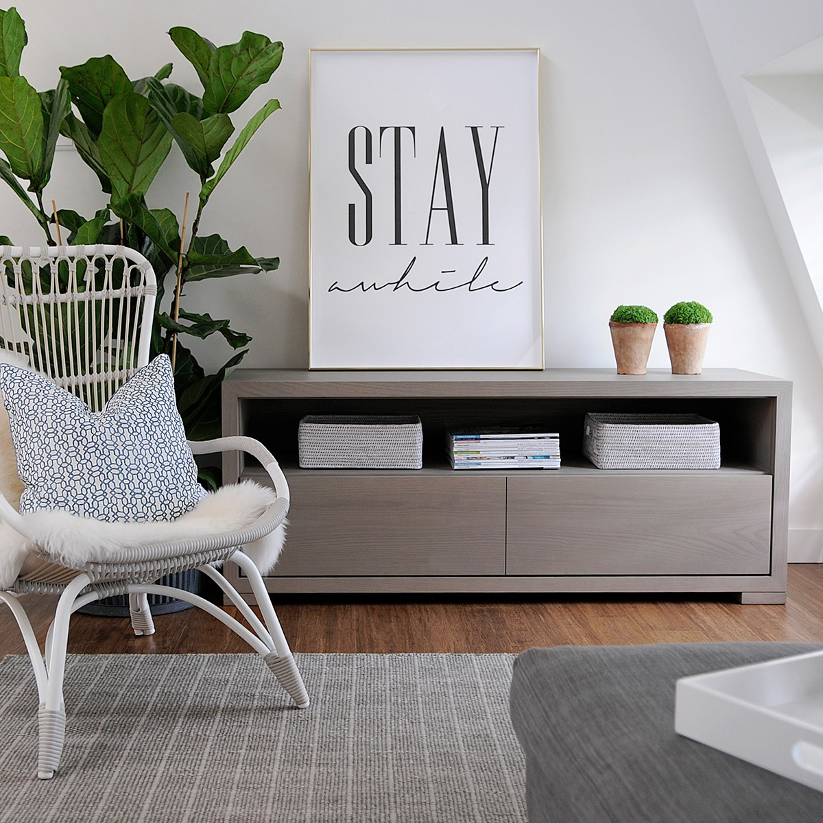 Style Store Media Unit