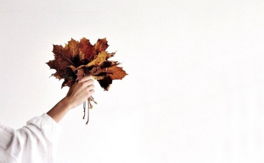 Image of Changing Seasons: How to transition your home into Autumn