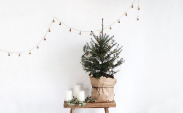 Image of Get Your Guest Room Ready For Christmas