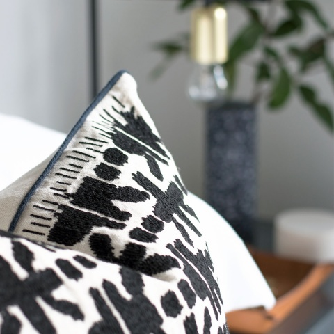 Shop Our must have cushions
